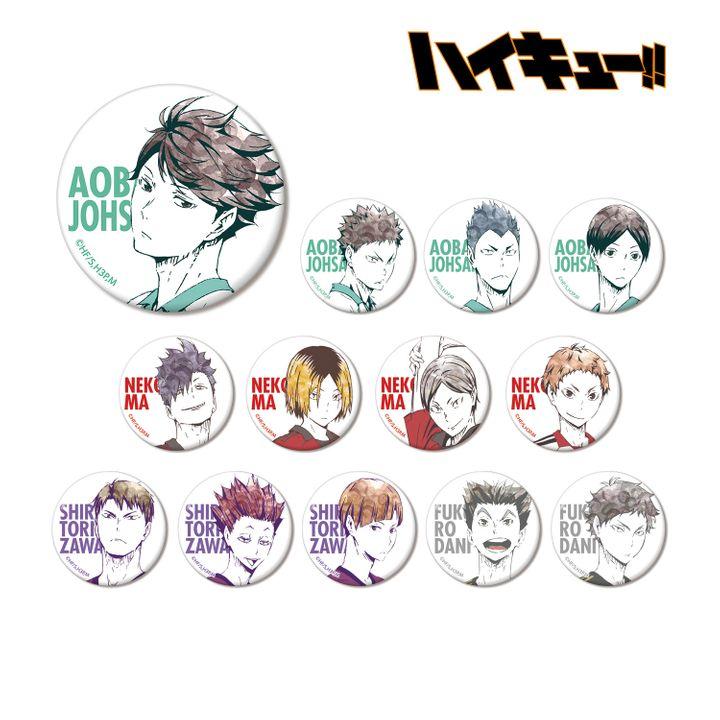 Haikyu!! Trading Ani-Art Can Badge Ver. B [SET OF 13]